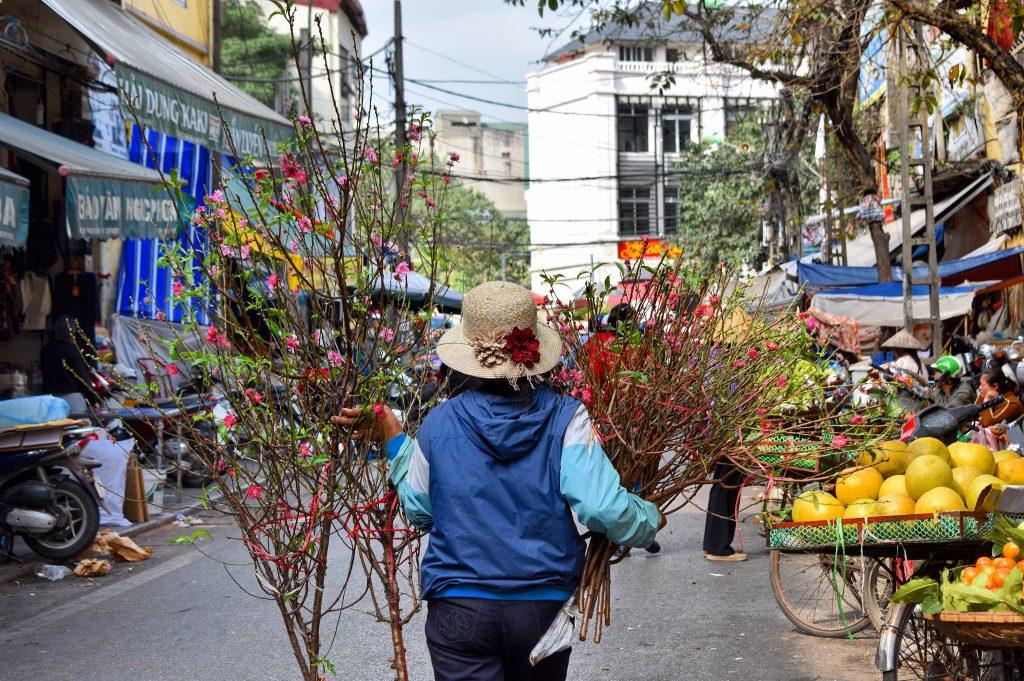 Tết, Zeit für Kirschblüten